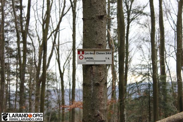 Randonnée dans vallée de la Bruche – Alsace