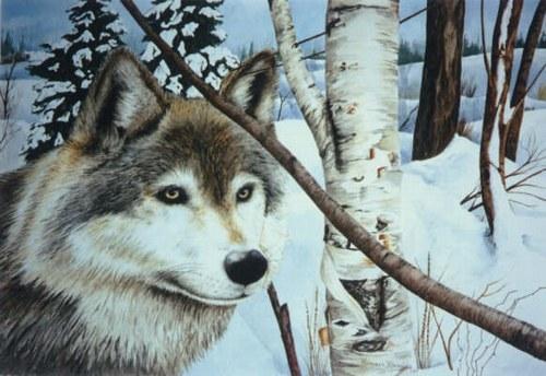 loup-alsace