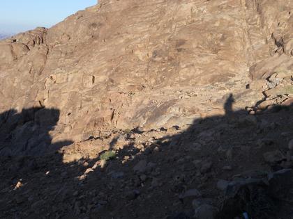 Nos silhouettes sur la montagne