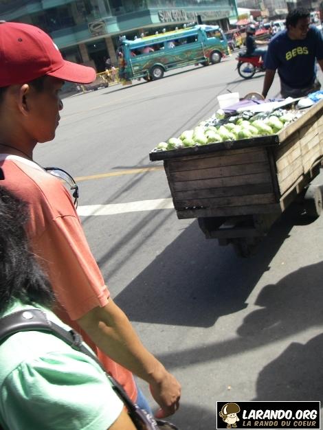 Trekking Cebu, Philippines – photos