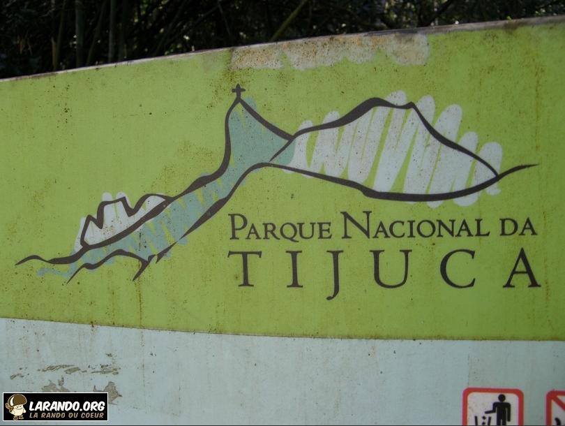 Trekking forêt de Tijuca, Brésil – photos