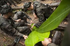 survie amazonie