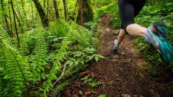 trail-colmar