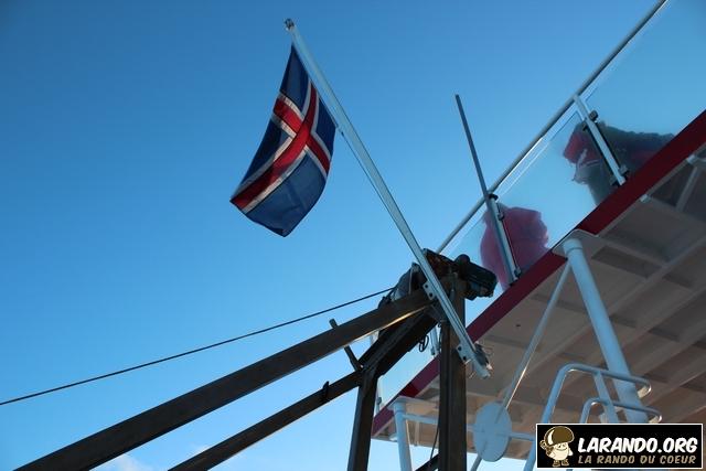 Islande : à la recherche de la baleine